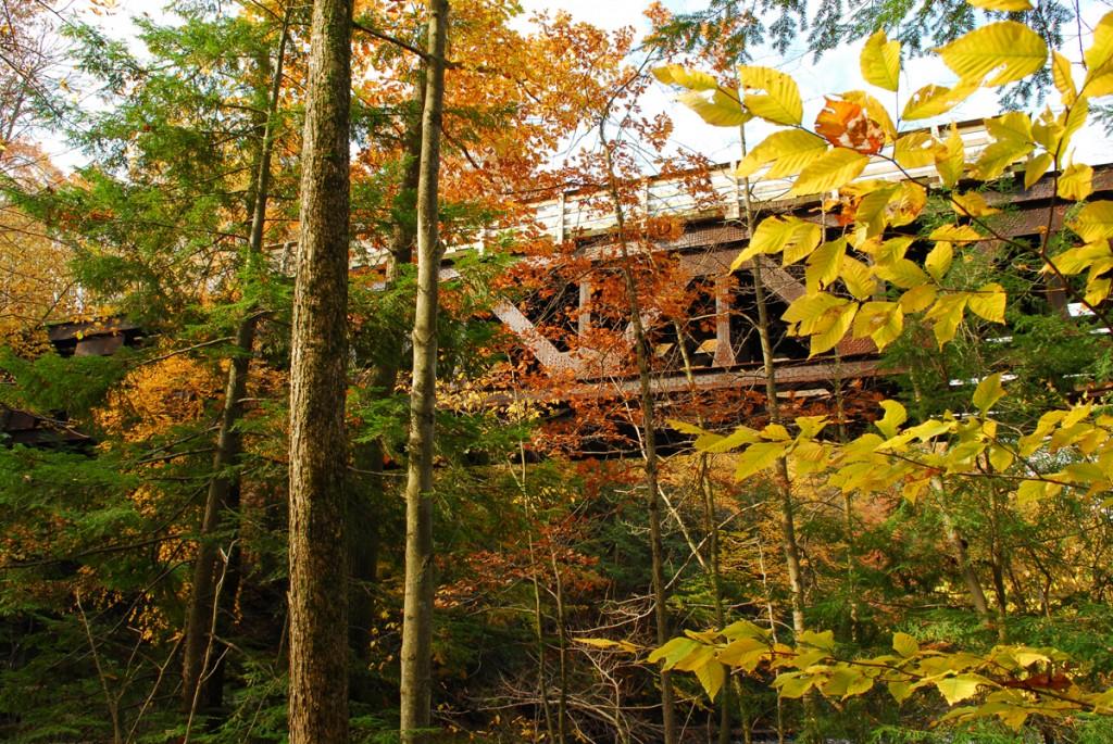 Western Reserve Greenway Trail