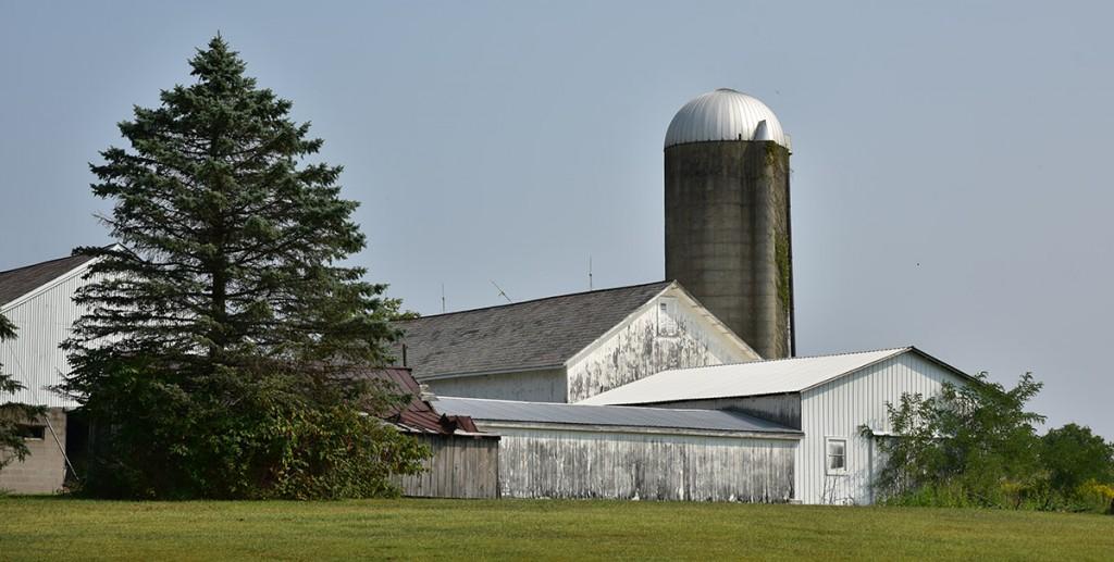 Tabor farm