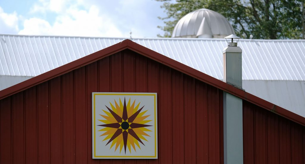 Sunflower barn quilt.